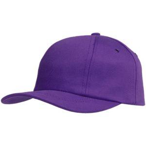 Бейсболка Bizbolka Capture, фиолетовая
